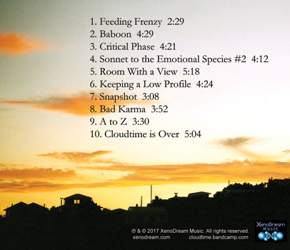 Views From a Room back cover
